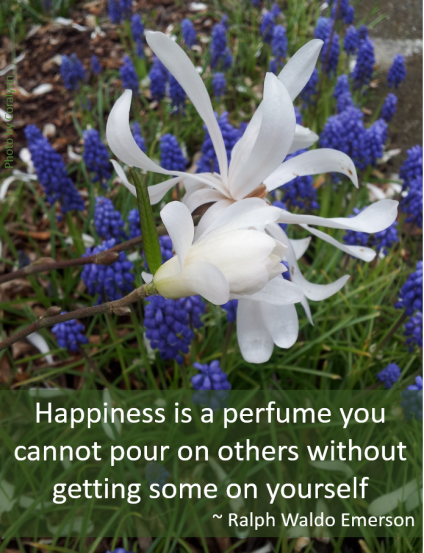 Ralph Waldo Emerson Happiness Quote